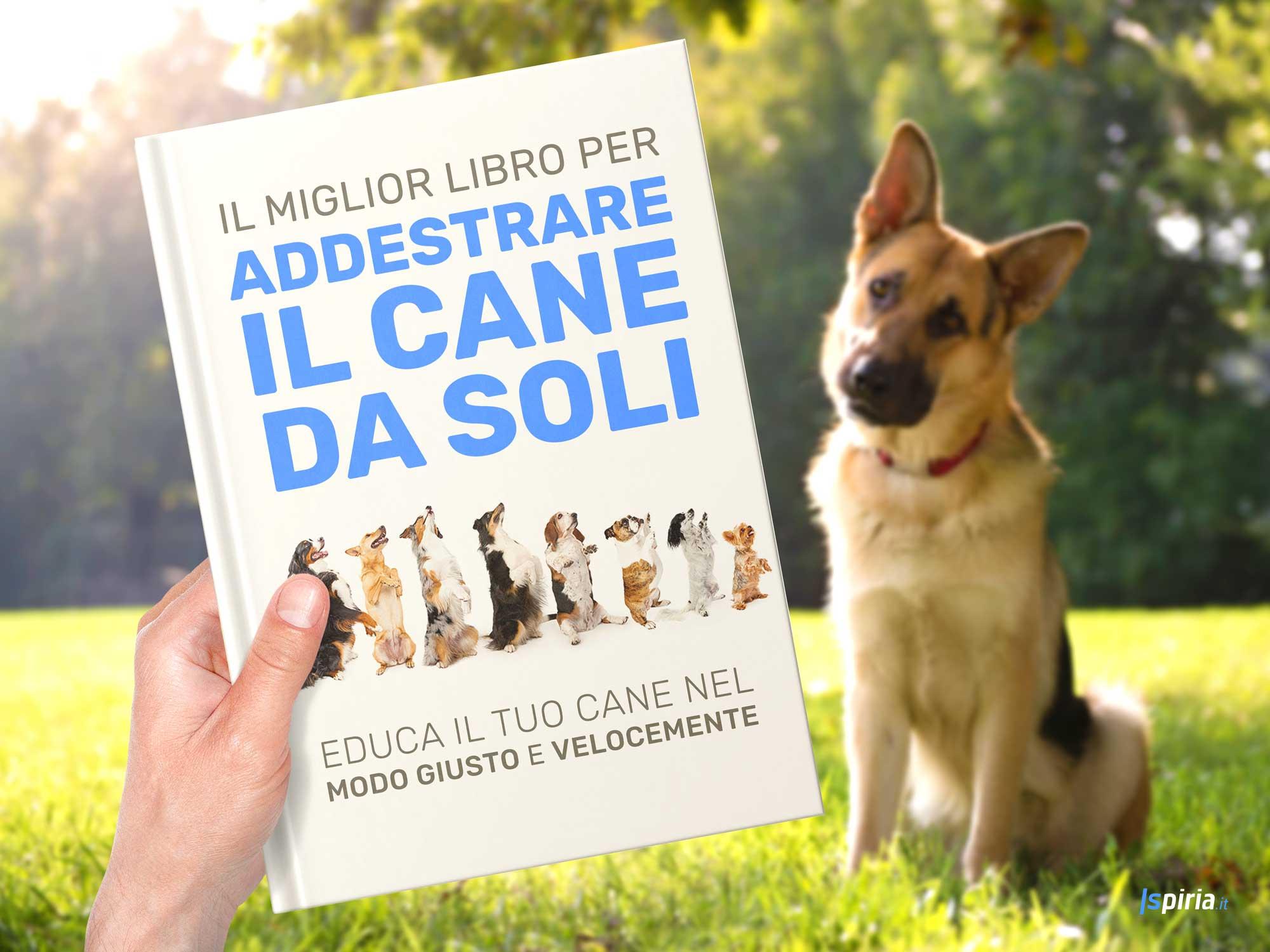 addestrare il cane da soli, libro