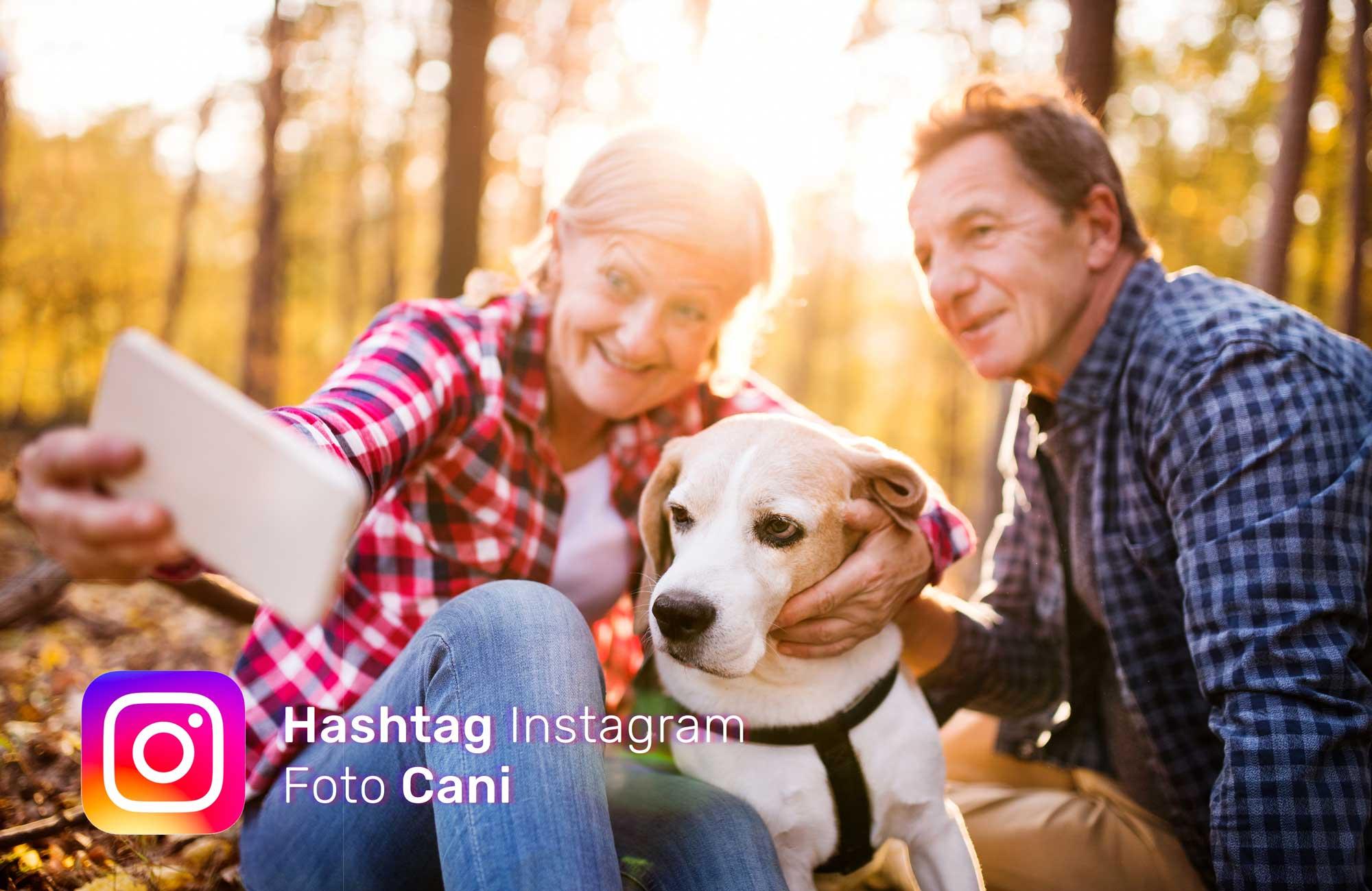 hashtag-per-foto-cani-su-Instagram