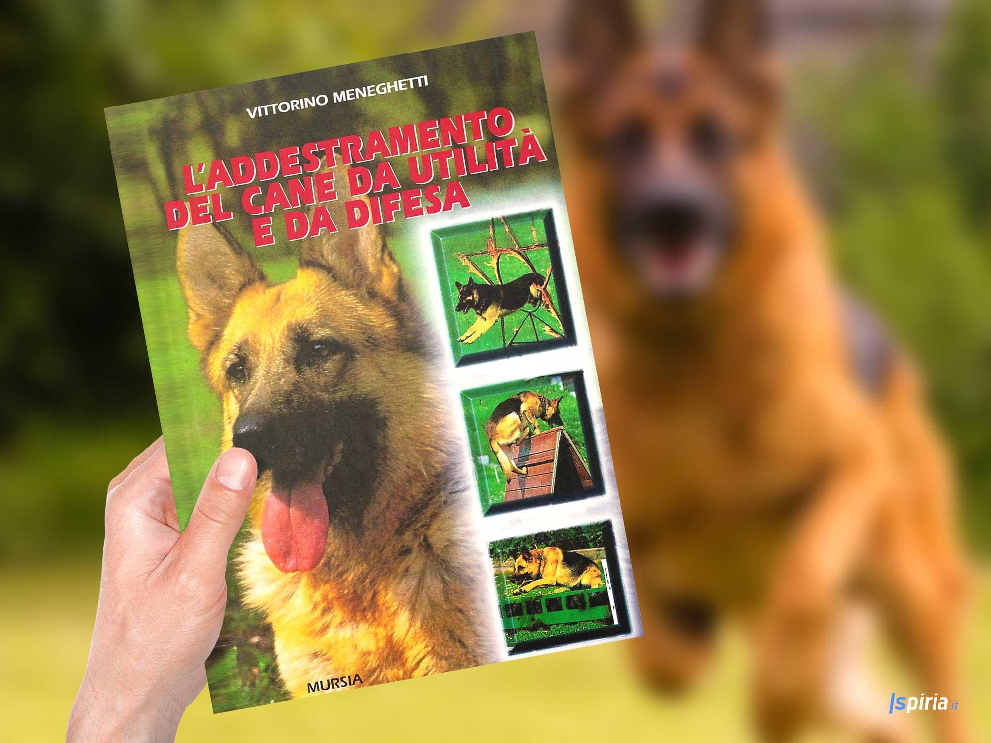 migliore-libro-addestramento-cane