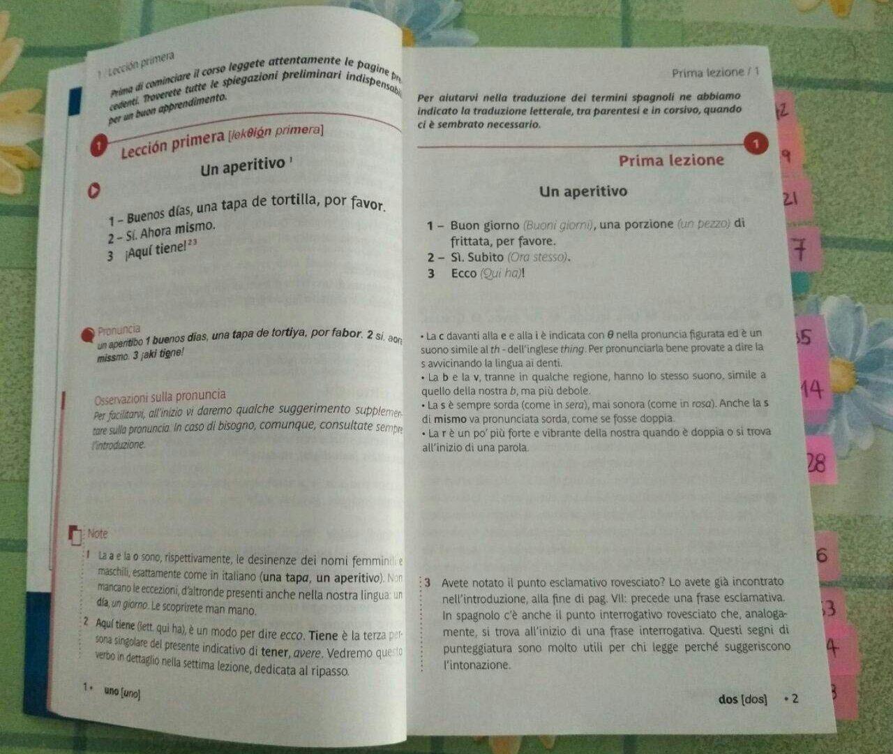 Spagnolo Espanol (4)