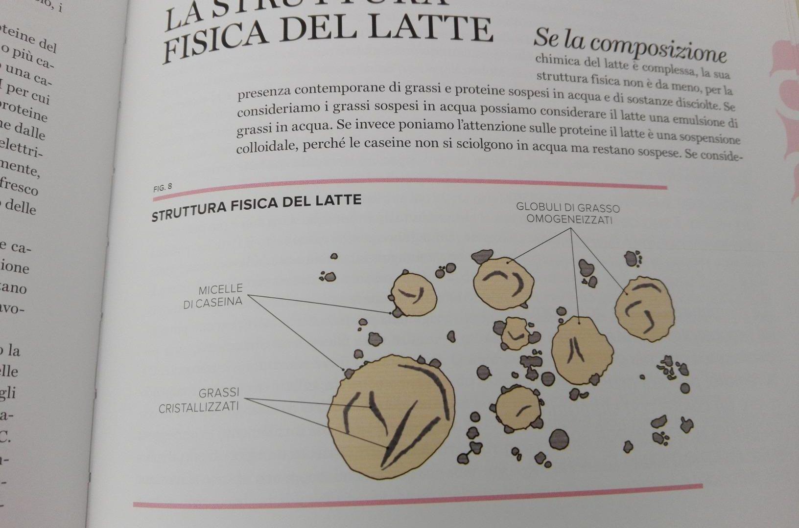 Scienza Della Pasticceria 3