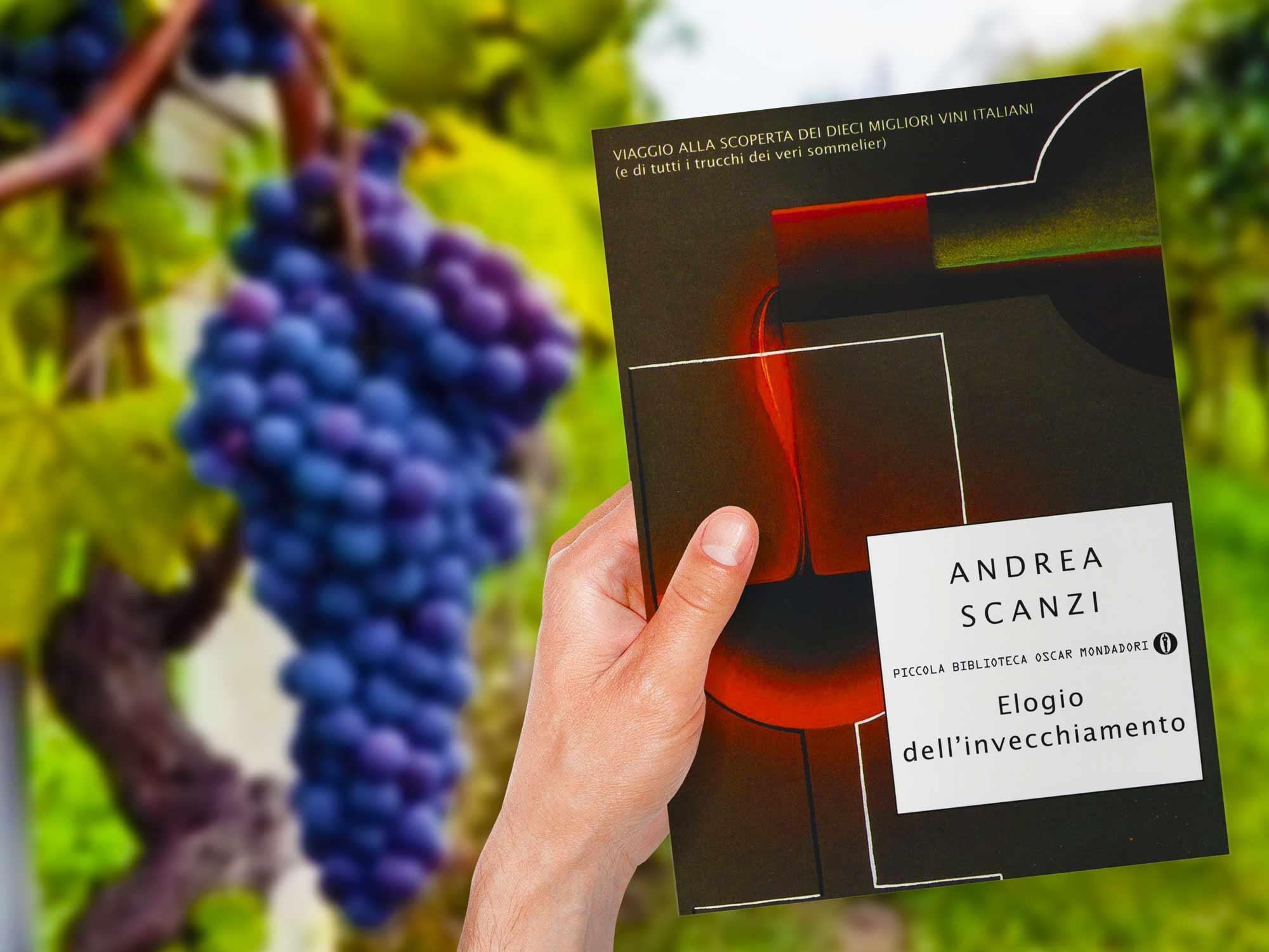 libro-sul-vino-scanzi