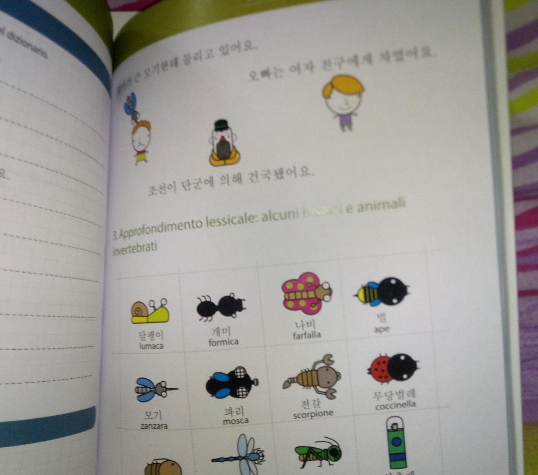 Libro Coreano Livello Intermedio