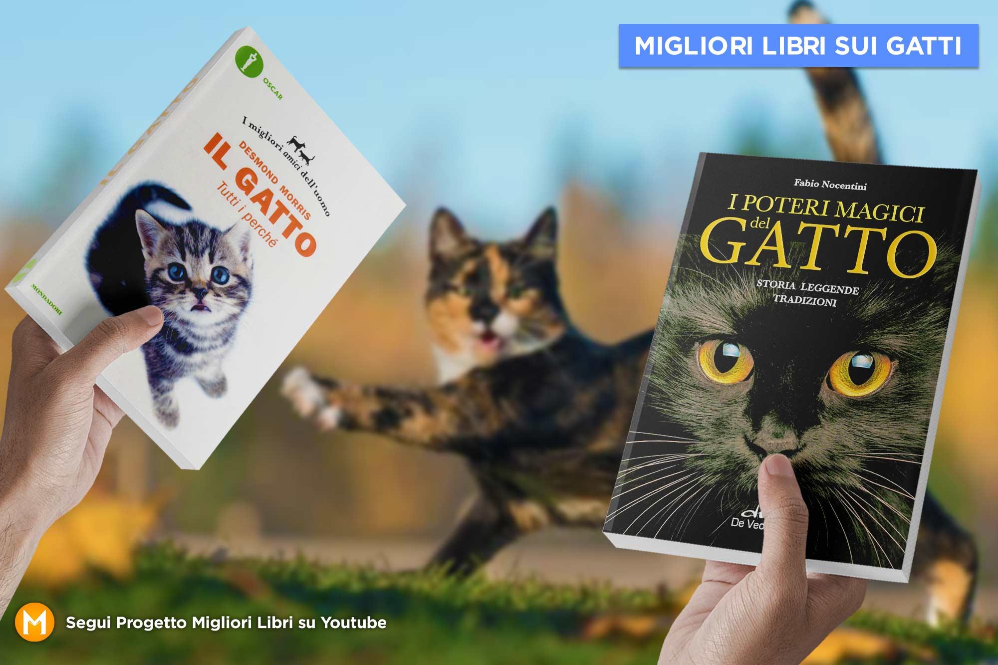 migliori-libri-sui-Gatti