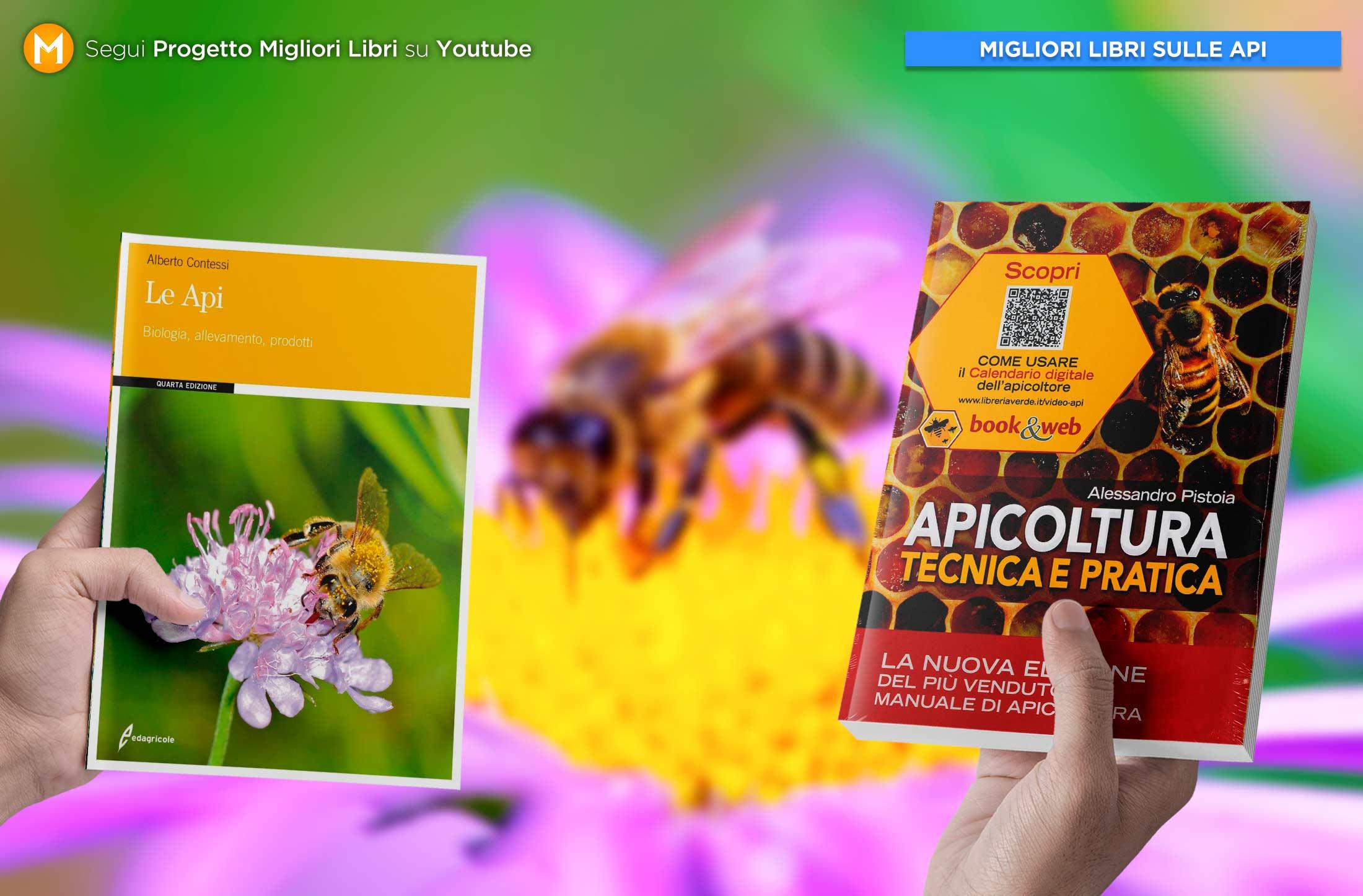 migliori-libri-sulle-api