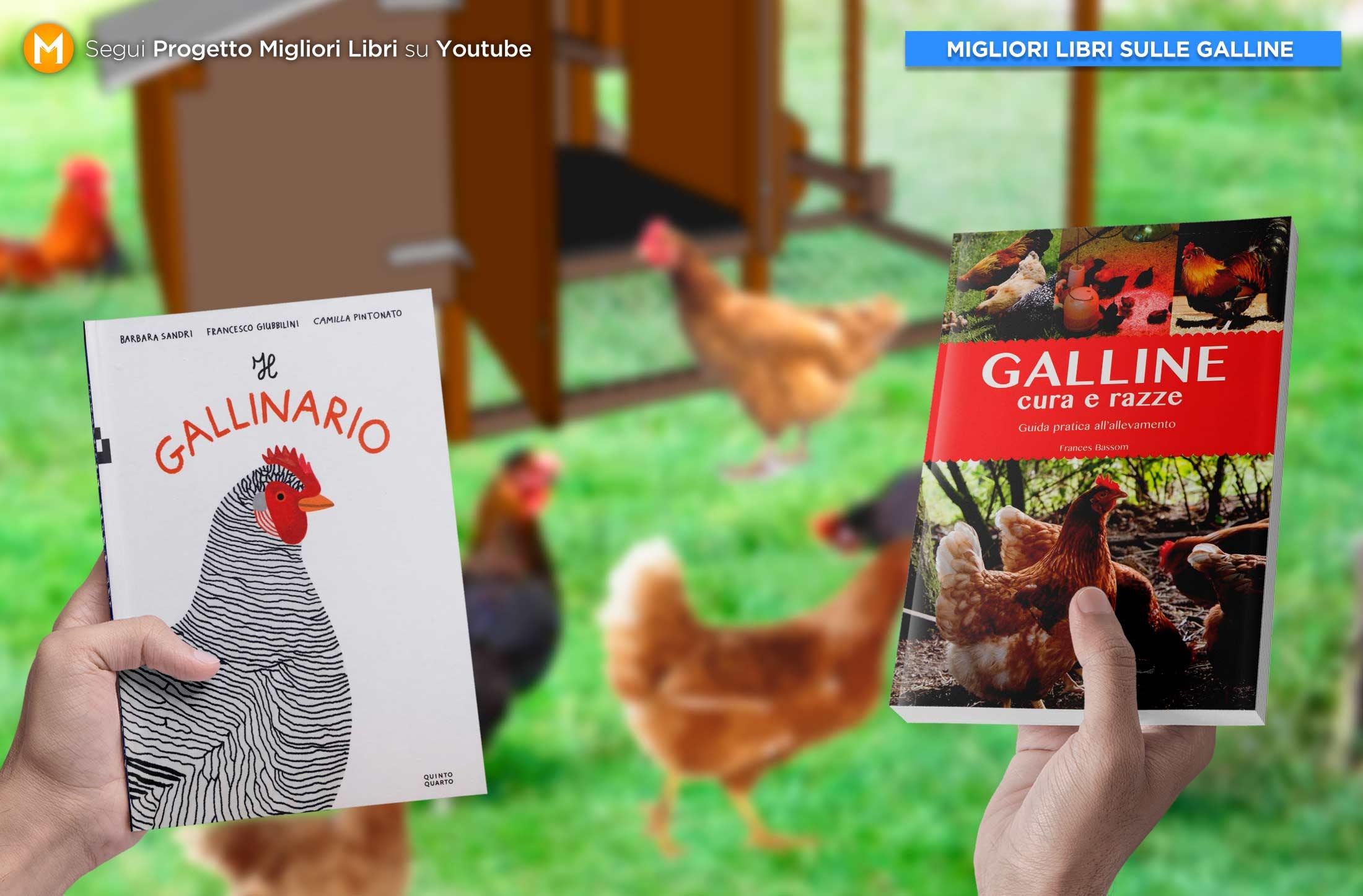 migliori-libri-sulle-galline